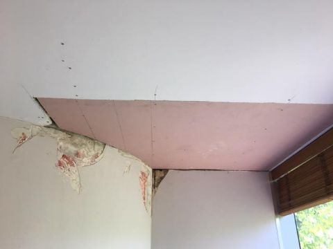 During | CEILING AND WALL REPAIRS (1)